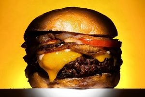 OD-AH438_burger_G_20110603171906